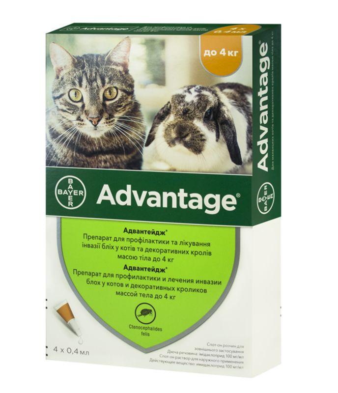 Bayer (Байер) Advantage (Адвантейж)  - Защита от блох для кошек и кролей до 4 кг