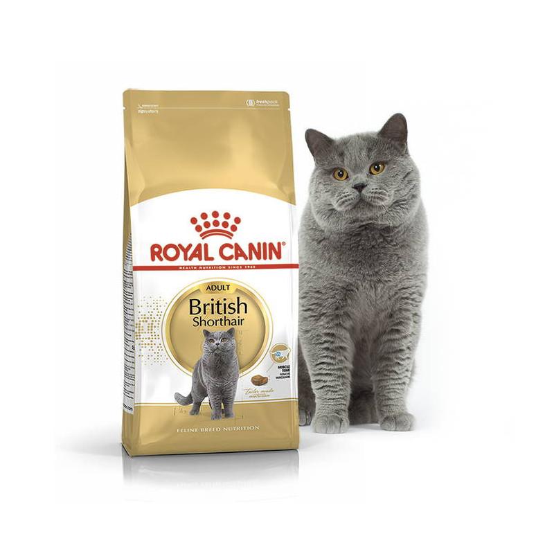 Royal Canin British Shorthair Adult для взрослых Британских короткошерстных кошек