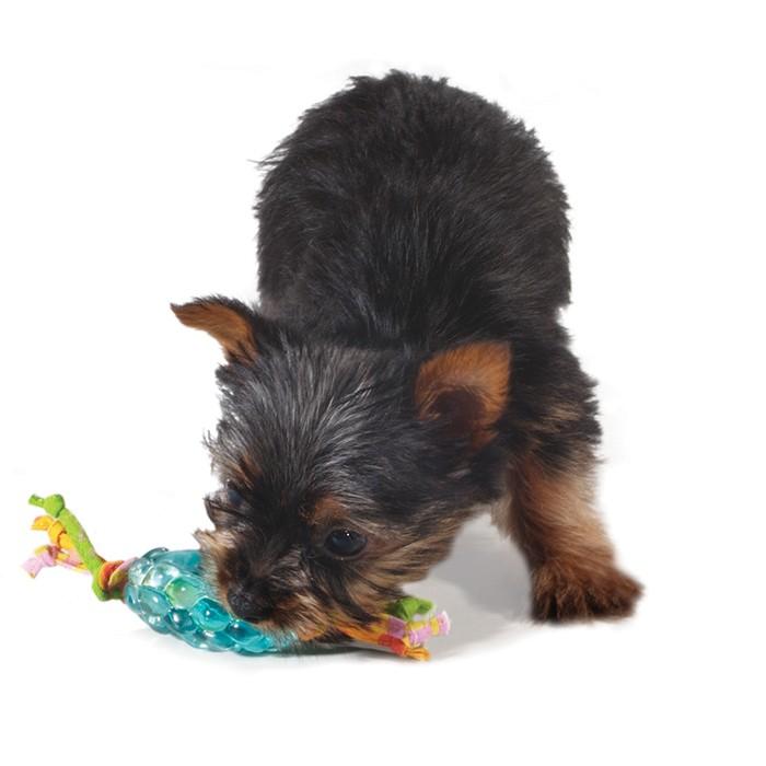 """PETSTAGES Orka Pine Cone Chew Игрушка для собак """"Орка Шишка с канатом"""" - Фото 3"""