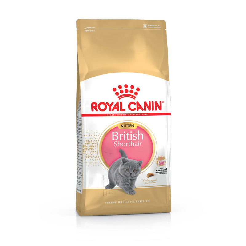 Royal Canin Kitten British Shorthair для британских короткошерстных котят