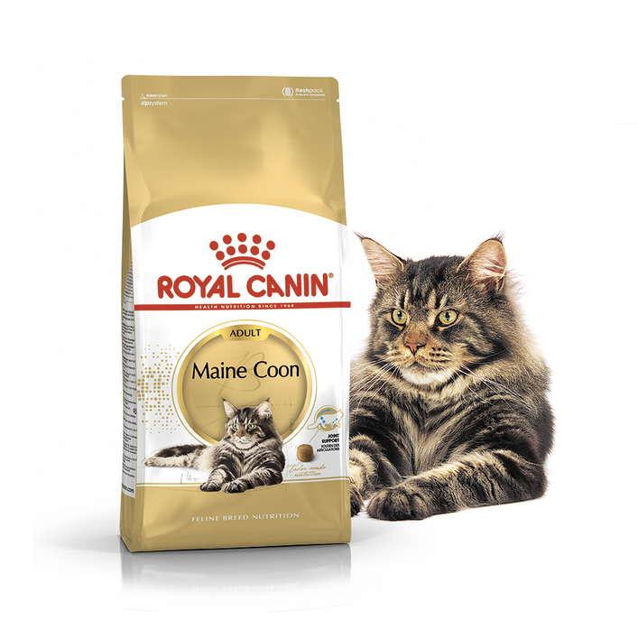 Royal Canin (Роял Канин) Maine Coon Adult. Сухой корм с птицей для взрослых кошек породы Мейн кун - Фото 3