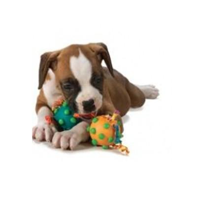 """PETSTAGES Twin Pull Игрушка для собак """"Два мяча на канате"""" - Фото 3"""