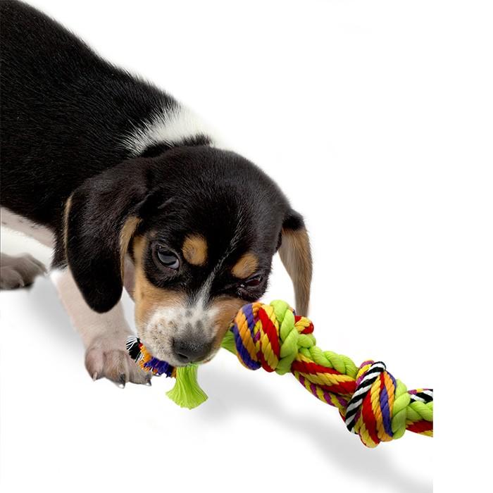 """Игрушка для собак """"Цветной канат с узлами"""" - Фото 2"""