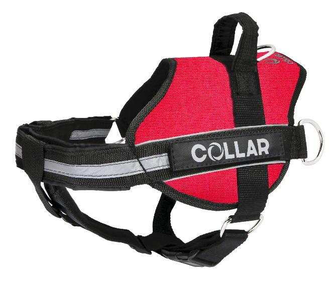 Collar (Коллар) DogExtremе Police – Шлея для собак со сменной надписью - Фото 5