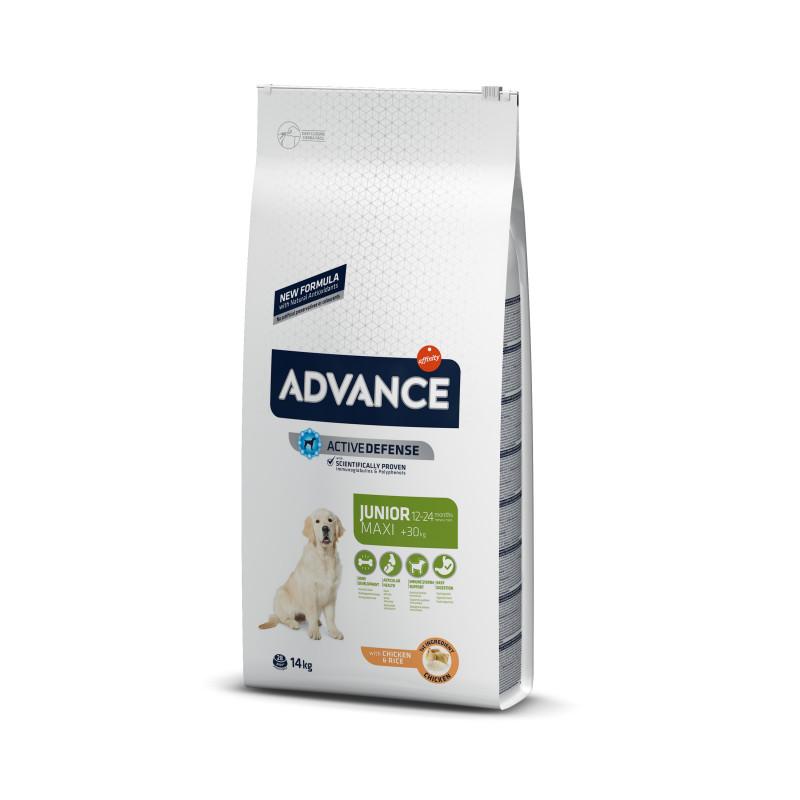 Advance (Эдванс) Dog Junior Maxi Корм для молодых собак крупных пород