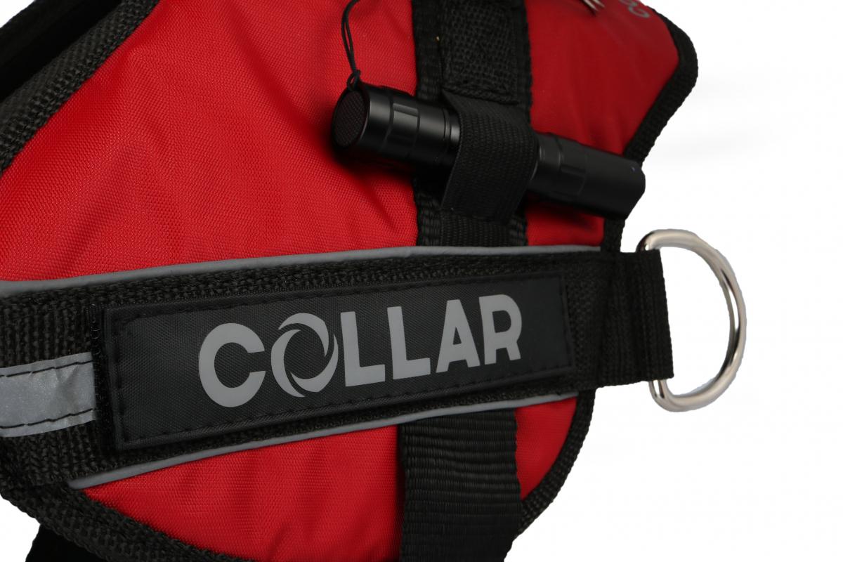 Collar (Коллар) DogExtremе Police – Шлея для собак со сменной надписью - Фото 2
