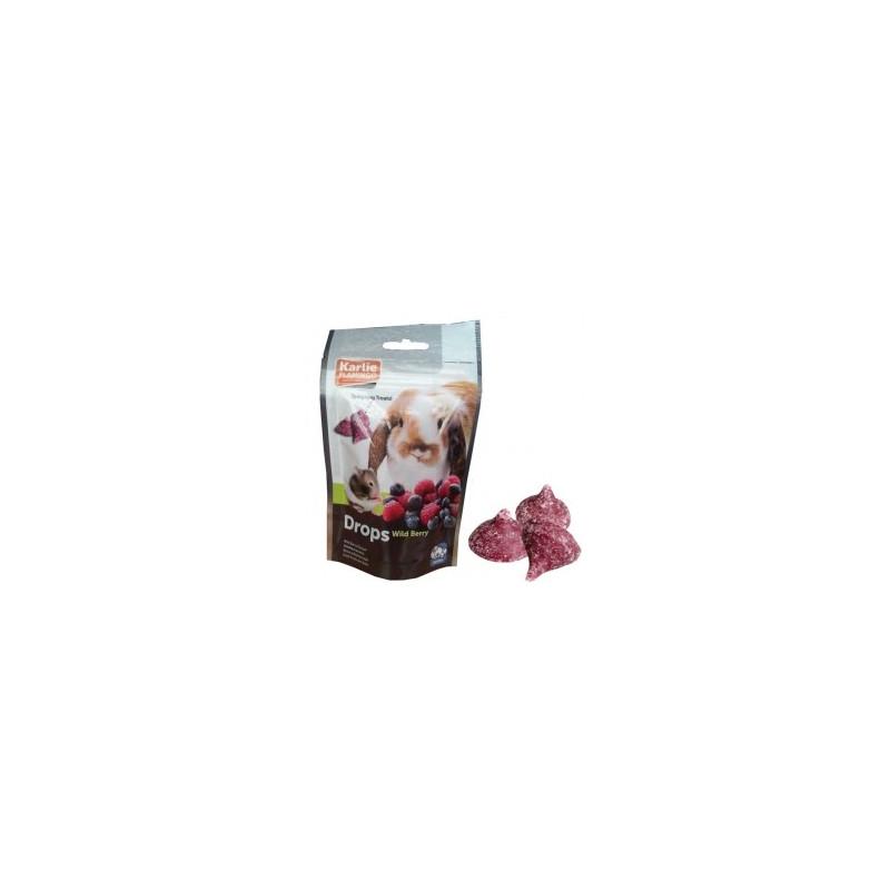 Karlie-Flamingo (Карли-Фламинго) DROPS WILDBERRY лакомство для грызунов дропсы с лесными ягодами