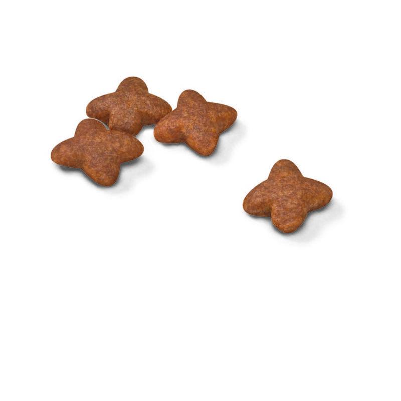 Royal Canin (Роял Канин) Mini Adult - Сухой корм с мясом птицы для взрослых собак мелких пород - Фото 2