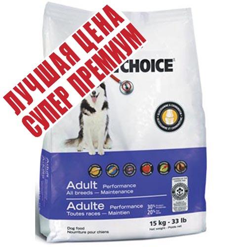 1st Choice (Фест Чойс) Active корм для активных и рабочих собак