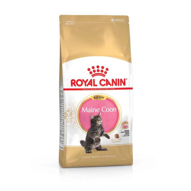 Royal Canin (Роял Канин) Maine Coon Kitten - Сухой корм с курицей для котят породы мейн кун