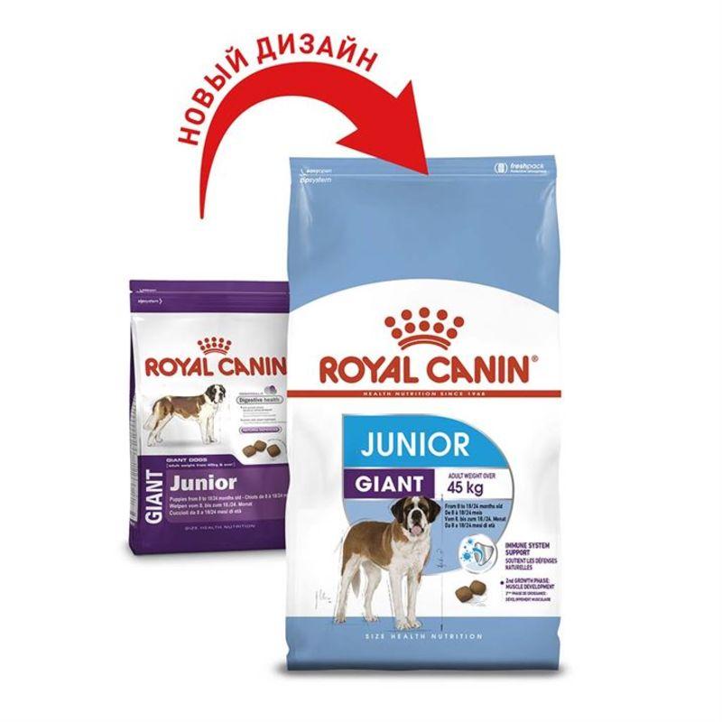 Royal Canin (Роил Канин) Giant Junior. Сухой корм для щенков от 8 до 18/24 месяцев - Фото 2