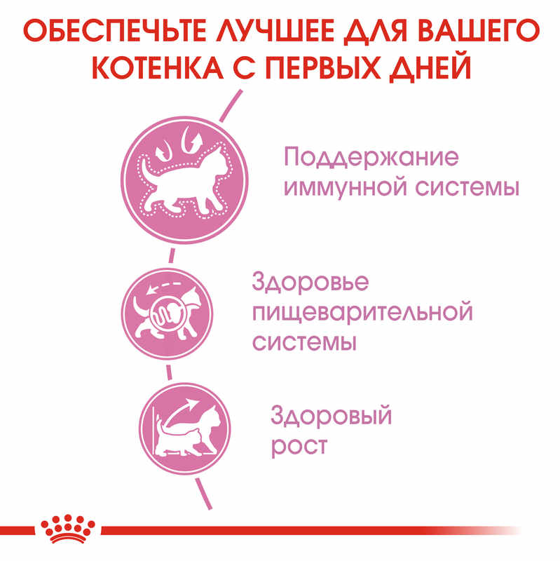 Royal Canin (Роял Канин) Kitten - Сухой корм с птицей для котят до 12 мес - Фото 5