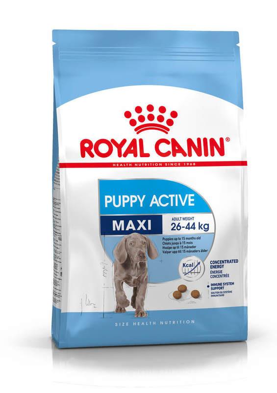Royal Canin (Роял Канин) Maxi Puppy Active - Сухой корм для активных щенков крупных пород