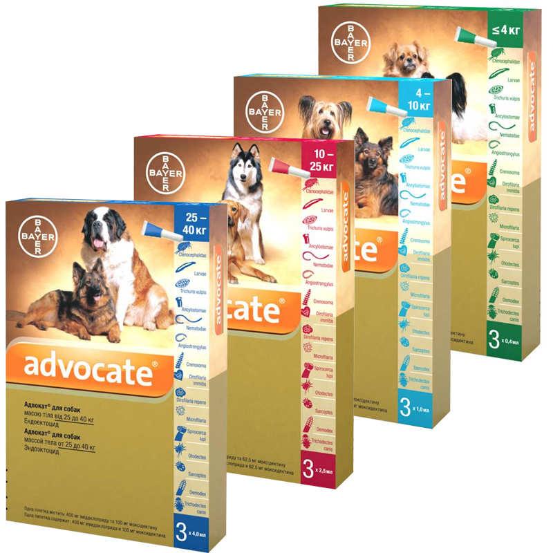 Advocate by Bayer Animal. Противопаразитарные капли Адвокат для собак от блох, вшей, клещей, гельминтов, 1 пипетка