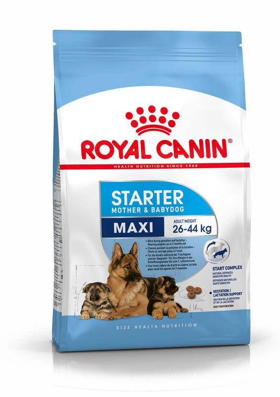 Royal Canin (Роял Канин) Maxi Starter Mother & Babydog - Сухой корм для щенков и кормящих самок крупных пород