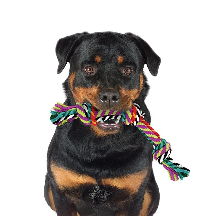 """Игрушка для собак """"Цветной канат с узлами"""" - Фото 4"""