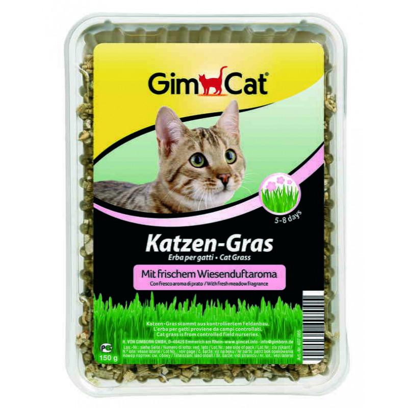 GimСat (ДжимКэт) Katzen-Gras. Быстропрорастающая травка для кошек с луговым ароматом