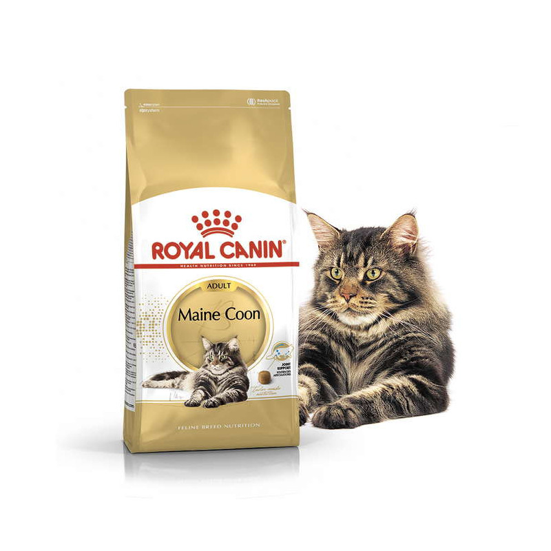 Royal Canin (Роял Канин) Maine Coon Adult. Сухой корм с птицей для взрослых кошек породы Мейн кун