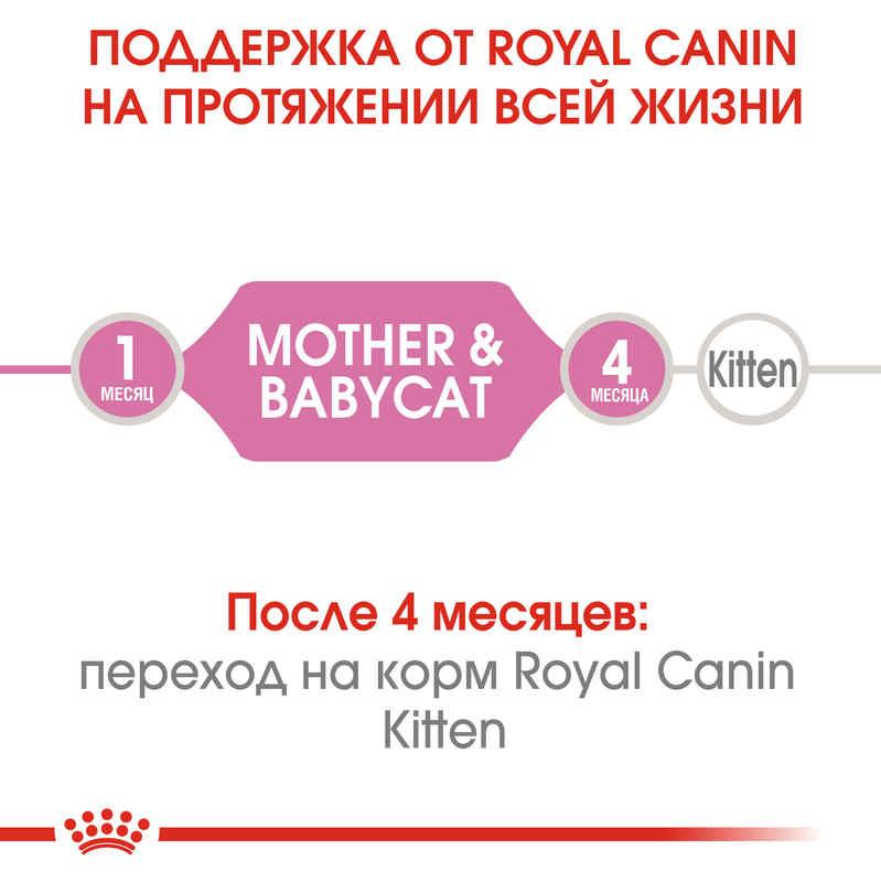 Royal Canin (Роял Канин) Babycat Instinctive - Консервированный корм для котят с момента отъема до 4 месяцев - Фото 5