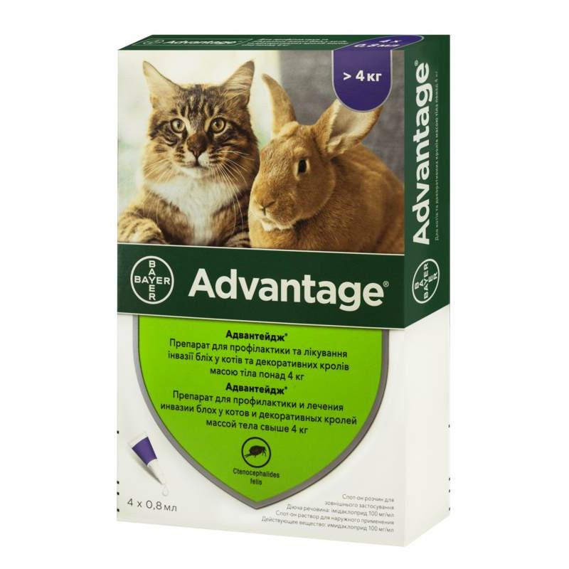 Advantage (Адвантейж) 80 для кошек и кролей свыше 4кг