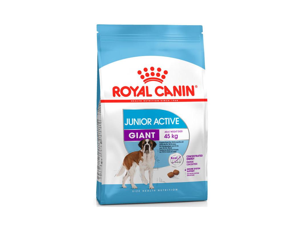 Royal Canin (Роял Канин) Giant Junior Active. Сухой корм для щенков от 8 до 18/24 месяцев с повышенной активностью