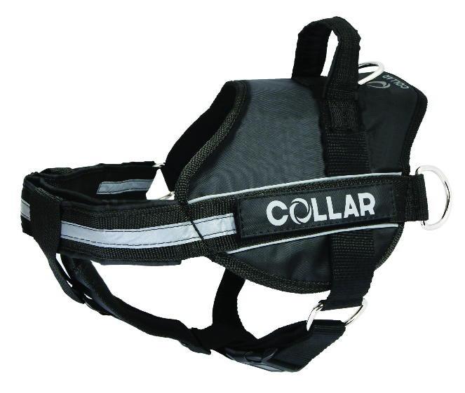 Collar (Коллар) DogExtremе Police – Шлея для собак со сменной надписью - Фото 6